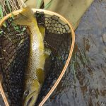 Wr-1 Wooden Rubber Trout Net Customer Product Image 1